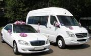 Авто на свадьбу,  съемку,  трансфер