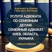 Адвокат в Киеве. Юридическая помощь.