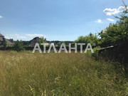 Продам земельный участок с. Ходосовка.
