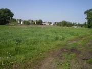 Земельный участок в с. Волошиновка