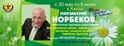 Курс Норбекова Мастерская здоровья и долголетия