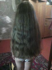 Продать натуральные волосы в любом городе. Дорого.