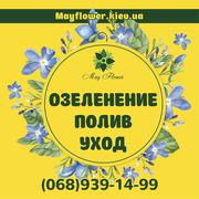 Уход за садом,  озеленение,  услуги садовника,  посадка и обрезка деревье