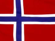 Робота в Норвегії для механіків легк-вантаж. авто,  автобусів,  сільсько
