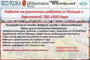 Работа в Польше для всех! От 3350 Злотых в месяц! Услуги БЕСПЛАТНО!!